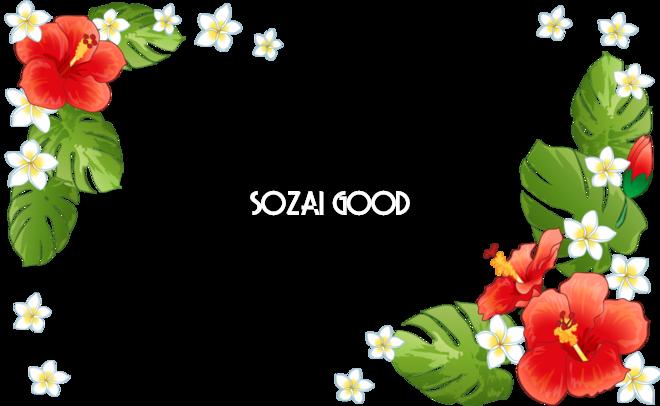 ハワイアン風のお花や葉 フレーム素材 飾り枠無料背景イラスト 素材good