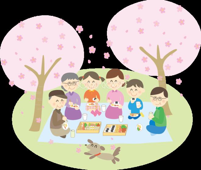 桜を花見宴会をする6人家族 無料イラスト 素材good