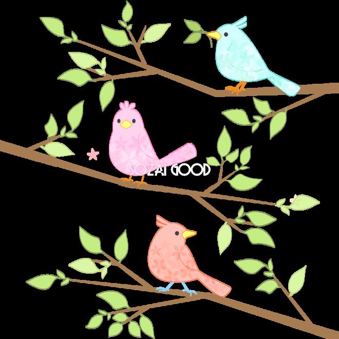 枝と鳥正面と横無料イラスト 素材good