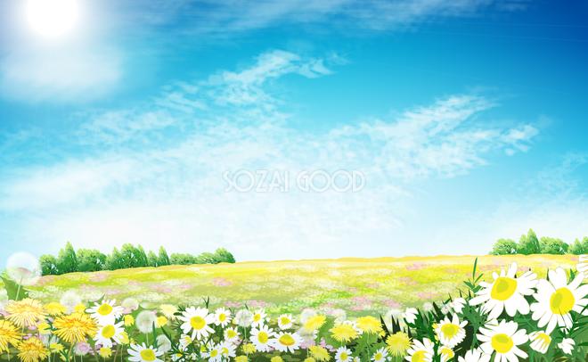 綺麗な空と丘に咲く花畑 無料背景イラスト29488 素材good
