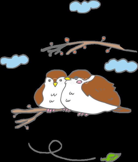 冬のスズメ正面と横向き無料イラスト37155 素材good