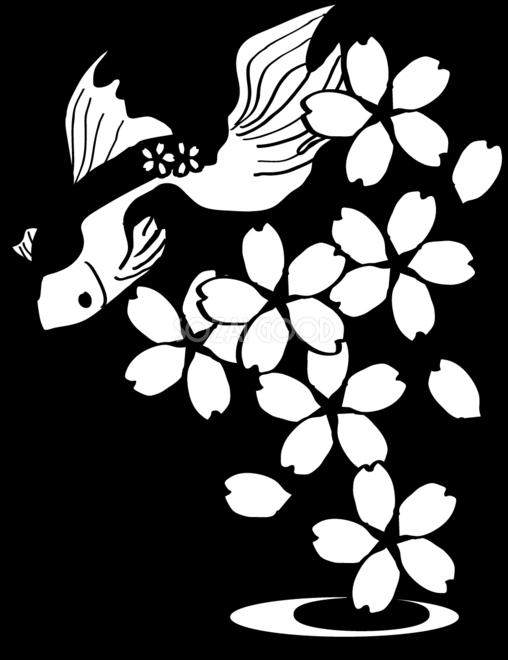 白黒の桜イラスト おしゃれ(鯉と花びら)39648