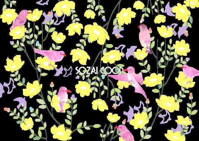 鳥と花,おしゃれ無料背景イラスト40242