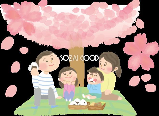 桜をお花見宴会 家族親子の無料イラスト春42262 素材good
