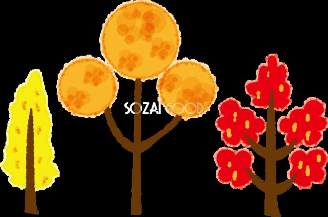 秋の紅葉 もみじ したかわいい木の無料イラスト51783 素材good