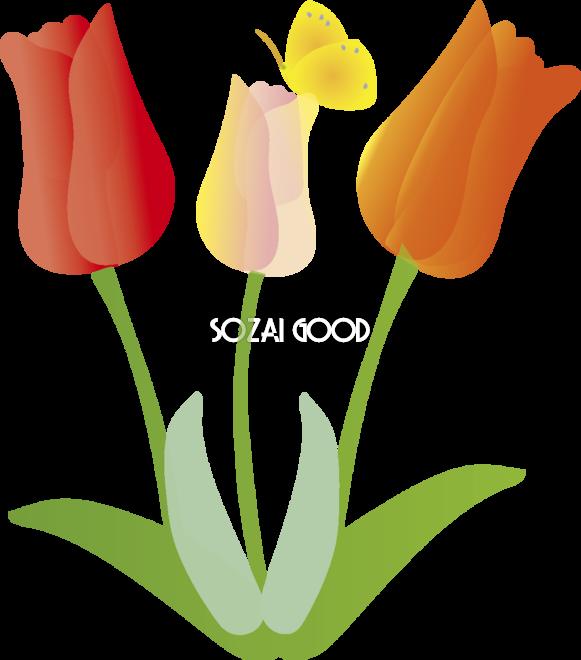 チューリップの花無料イラスト 春3 5月 素材good