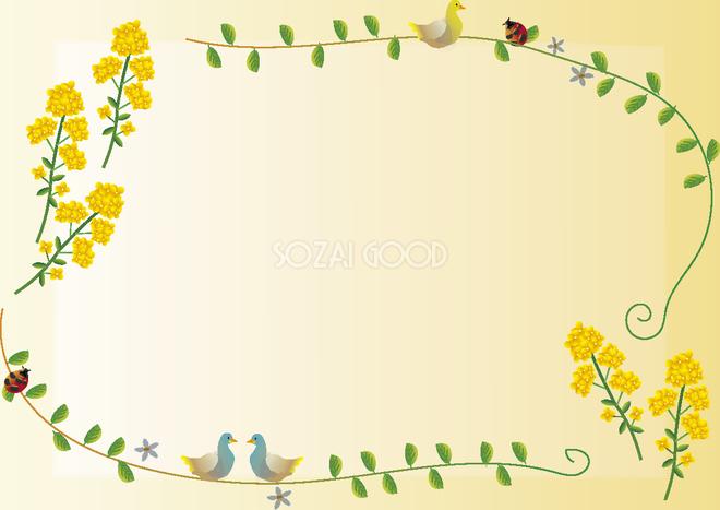 かわいい菜の花 冬春2月5月花フレーム無料イラスト64790 素材good