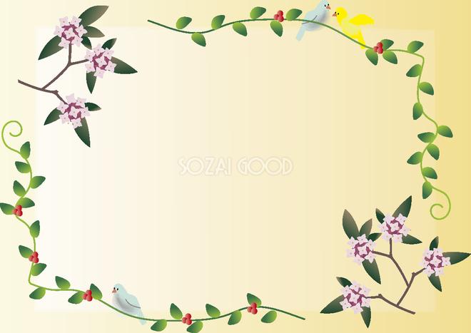 沈丁花じんちょうげ 冬春2月3月花フレーム無料イラスト64802