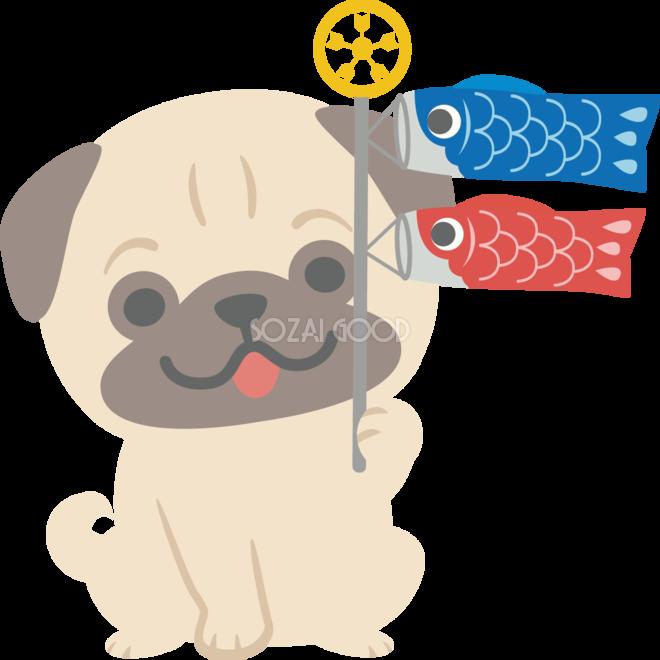 パグ犬がこいのぼりを持つかわいい動物無料イラスト67284 素材good