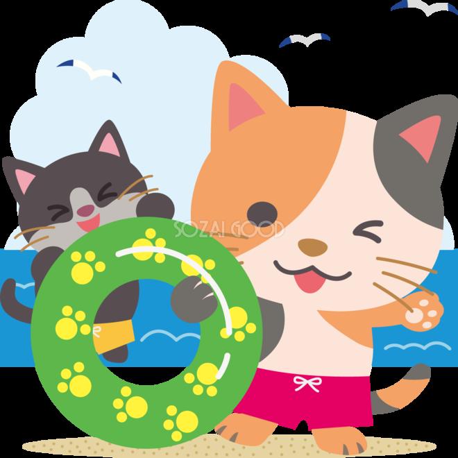 猫の海開き かわいい動物無料イラスト夏68472 素材good