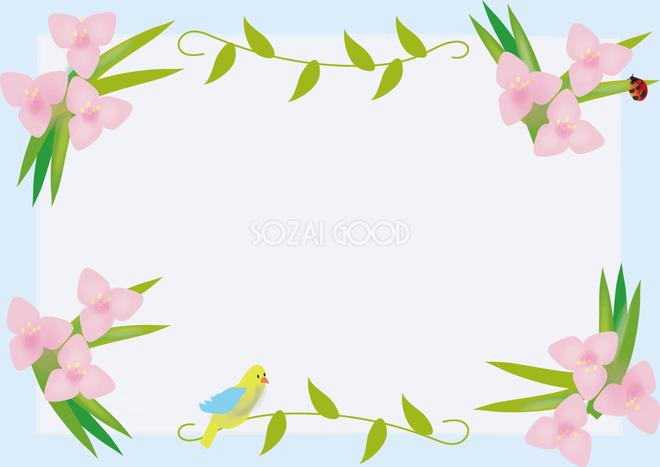 紫露草むらさきつゆくさ春4月 7月の花フレーム無料イラスト68660