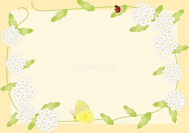小手毬こでまり春4月 5月の花フレーム無料イラスト68668 素材good