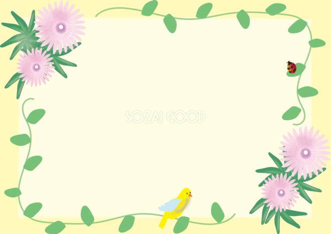 松葉菊 まつばぎく 春4月 8月の花フレーム無料イラスト 素材good