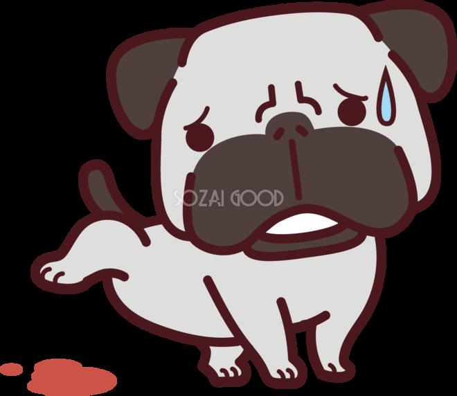 パグが病気で血尿 かわいい犬の無料イラスト69153 素材good