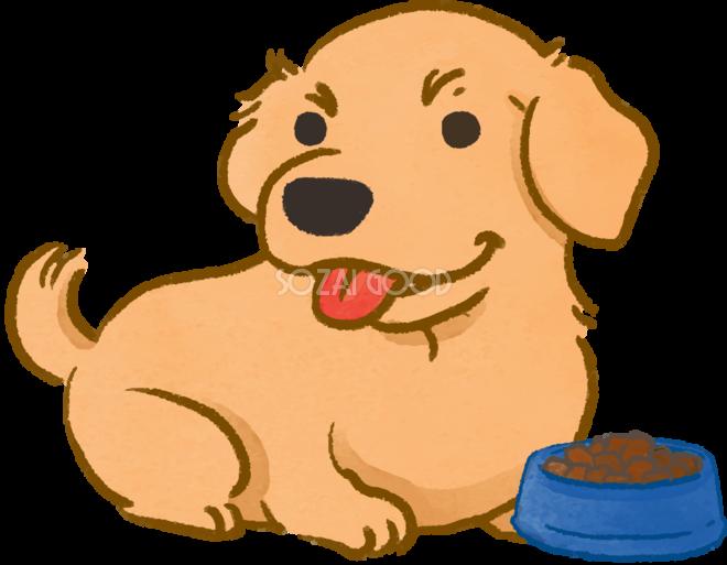 ゴールデンレトリバーご飯を待つかわいい犬の無料イラスト69971 素材good