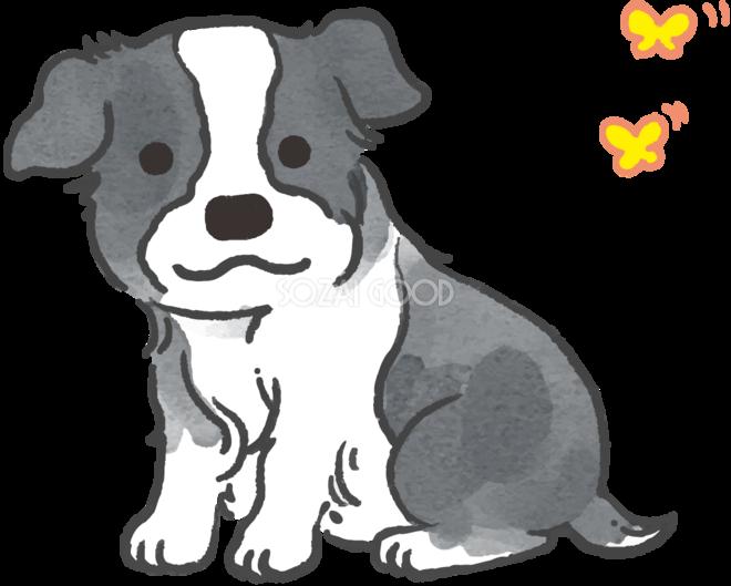 ボーダーコリー(蝶々)かわいい犬の無料イラスト70361
