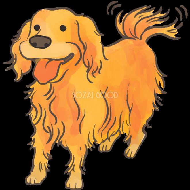 犬 ゴールデン レトリバー イラスト素材 3849591 フォトライブ