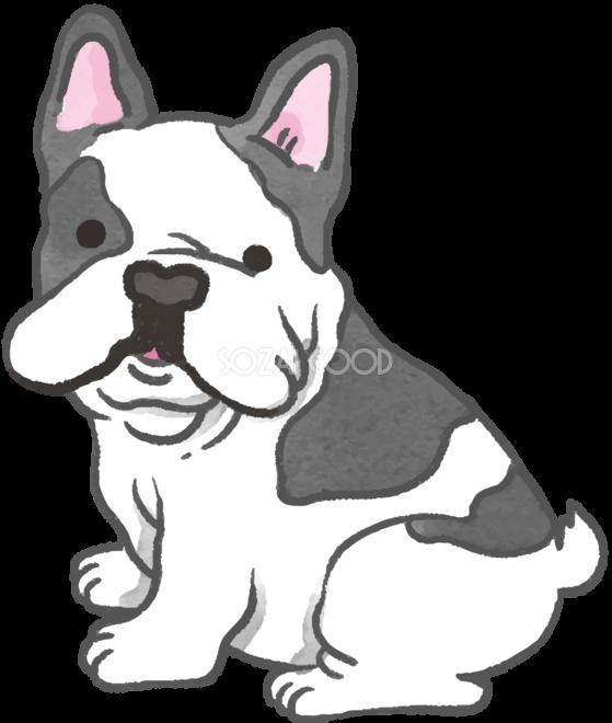 フレンチブルドック振り返るかわいい犬の無料イラスト70631 素材good