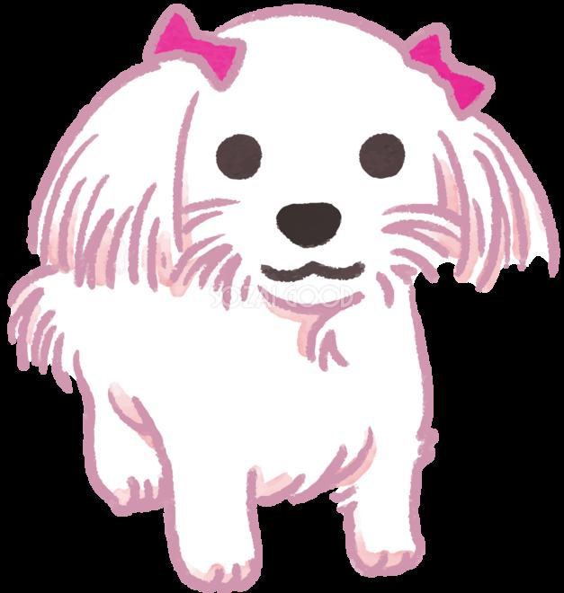 マルチーズ ピンクリボン かわいい犬の無料イラスト 素材good