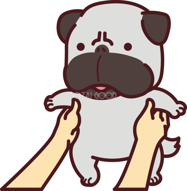 パグを抱っこし持ち上げる かわいい犬の無料イラスト71397 素材good