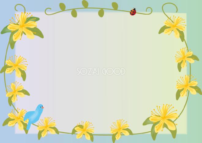未央柳びょうやなぎ夏6月 7月の花フレーム無料イラスト73798 素材good