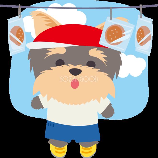 ヨークシャーテリア犬のかわいい運動会パン食い競走動物無料イラスト