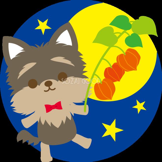 ヨークシャーテリア犬の十五夜ほおずきを持ち歩く動物無料イラスト