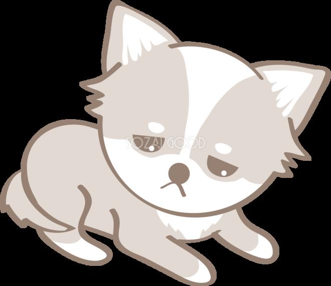 かわいいチワワ悲しい犬の無料イラスト80099 素材good