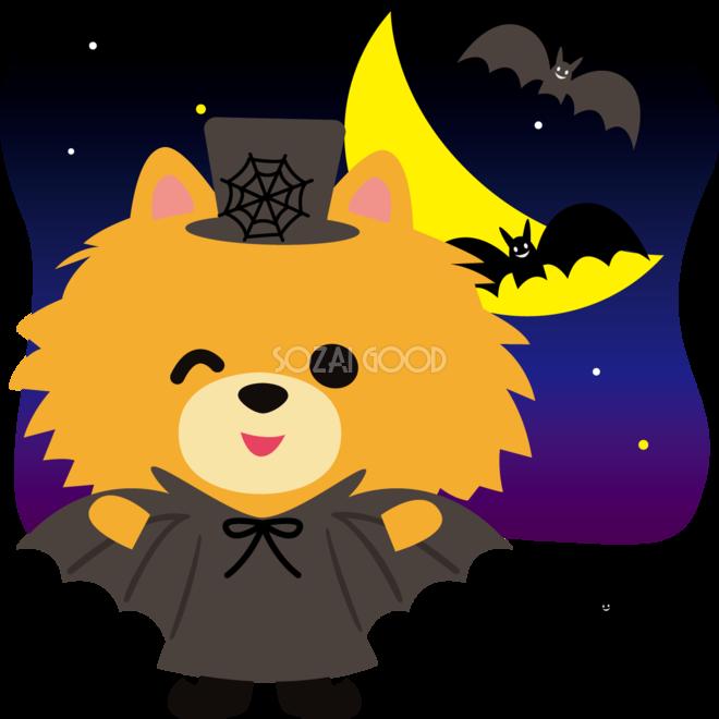 ハロウィン夜のコウモリたちポメラニアン犬のかわいい動物無料