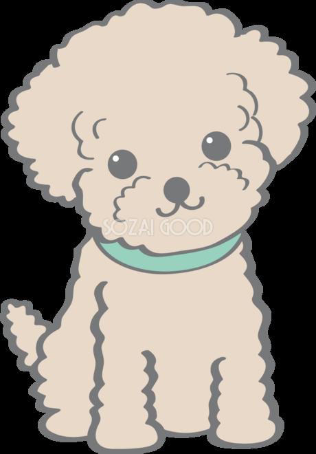 かわいいトイプードル お座り 座る 犬の無料イラスト 素材good