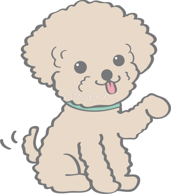かわいいトイプードルお手犬の無料イラスト80136 素材good