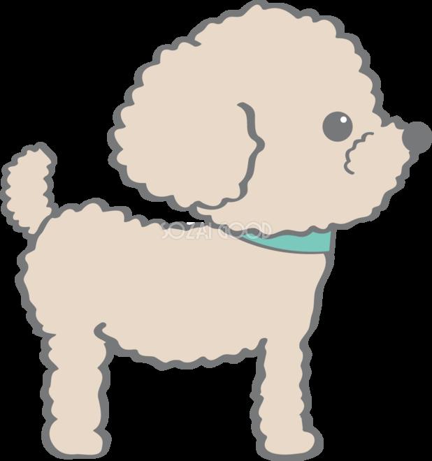 かわいいトイプードル横向き犬の無料イラスト80141 素材good