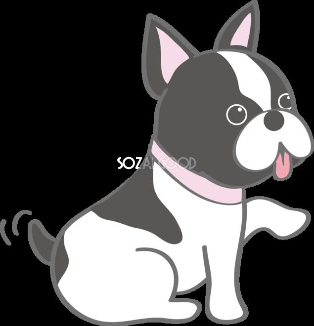 かわいいフレンチブルドッグお手犬の無料イラスト80159 素材good