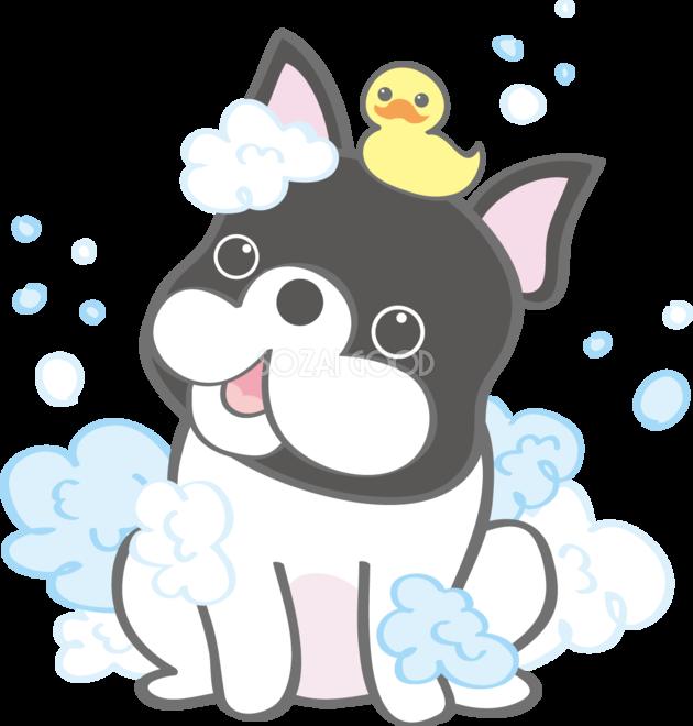 かわいいフレンチ・ブルドッグ(シャンプー)犬の無料イラスト80160
