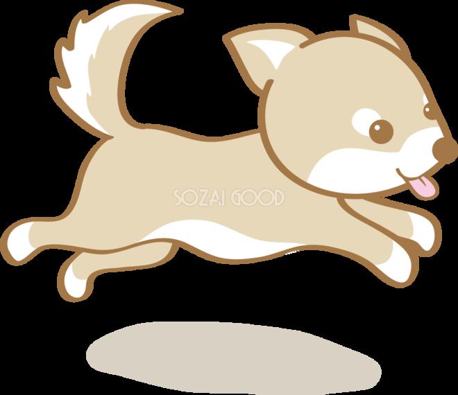 かわいい柴犬走る犬の無料イラスト80182 素材good