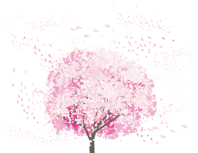 一本のリアル桜の木から風で舞う花びら透過イラスト背景なし無料 フリー