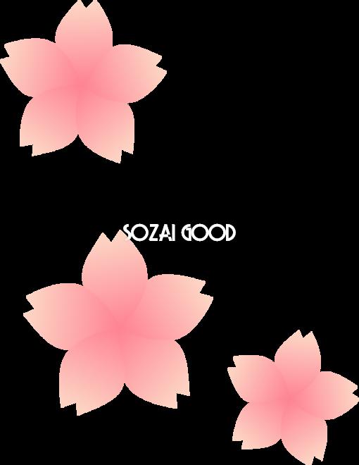 上から見た3枚の桜の花びらイラスト 無料 フリー83097 素材good