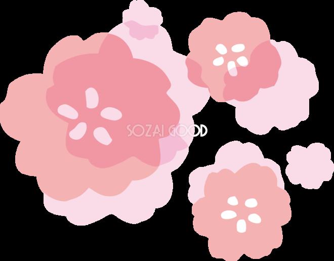 かわいい透け感のある桃の花 ひな祭り無料イラスト83192 素材good