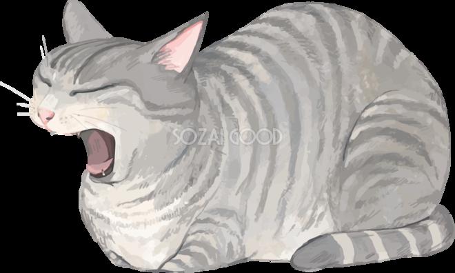 猫トラ柄の雑種ミックスあくびして眠そうリアル無料フリーイラスト