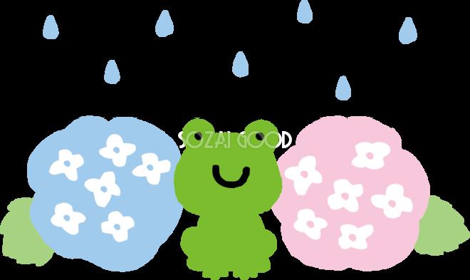 かわいいアジサイと雨粒とカエルイラスト無料フリー83724 素材good