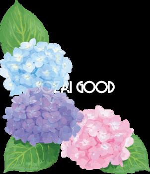おしゃれ綺麗な水色ピンク紫の角飾りのアジサイイラスト(梅雨)無料