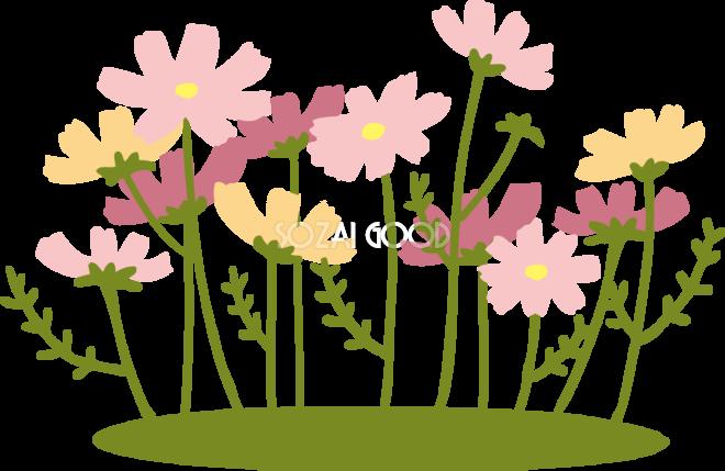 かわいいコスモスの花畑イラスト無料フリー84508 素材good